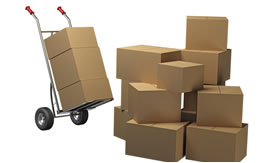 Document packing services Gypsum Colorado