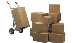 Document packing services Gypsum Colorado